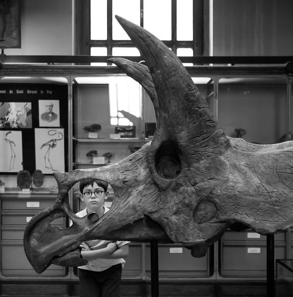 Paléontologie-19.jpg