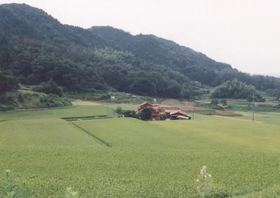 Tabuse, 1996