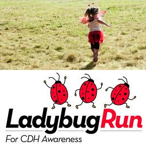Ladybug Run 2012