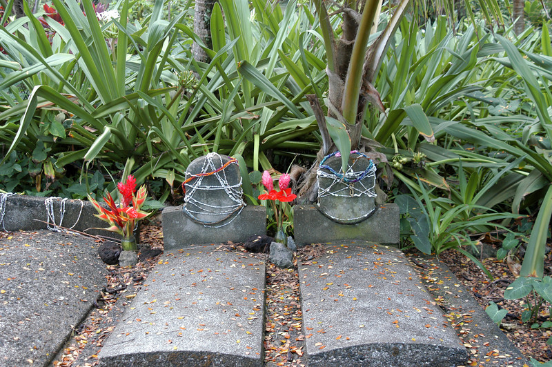 187- 20080410- Hawaii 15- Enroute to Hilo- Hawaii Tropical Botanical Gardens DSC_2799.jpg