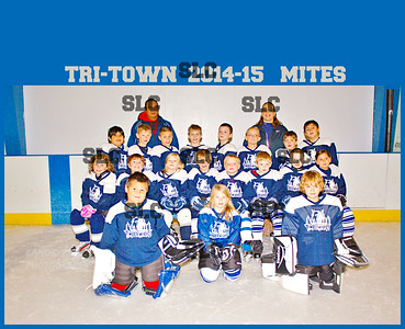 MITES 2014-15