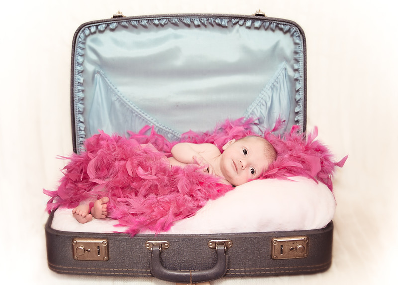 Suitcase and Feathers - Old Timey (1 of 1).jpg