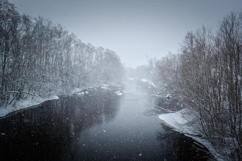 SPRING BEGINS WITH SNOWSTORM-ART22724.jpg