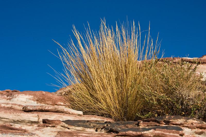 Redrock Canyon, Nevada U.S.