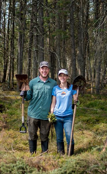 tree planting FOSZB Warren Nelson Bog Blue Spruce Road Sax-Zim Bog MN DSC07436.jpg