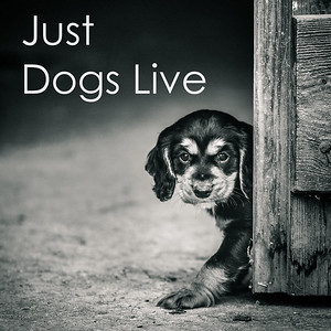 Just Dogs Live