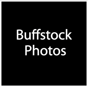 Buffstock