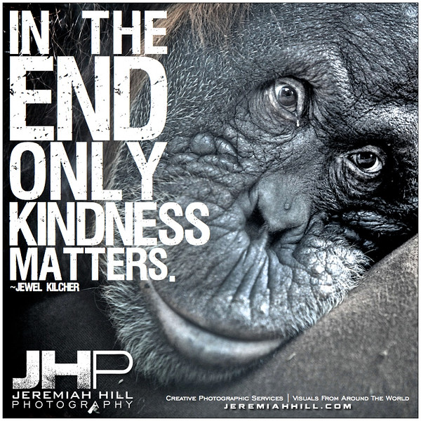 23-In the end only kindness matters.jpg
