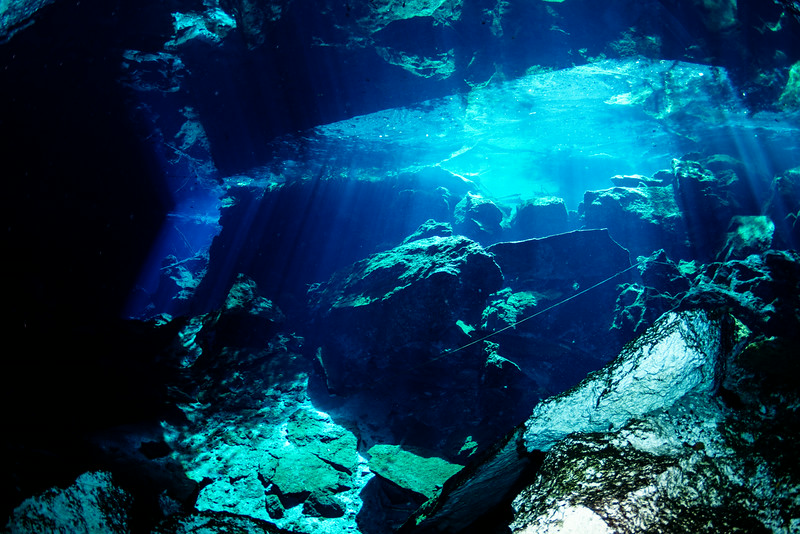 2014 Whale Shark - Cave Adventure-108.jpg