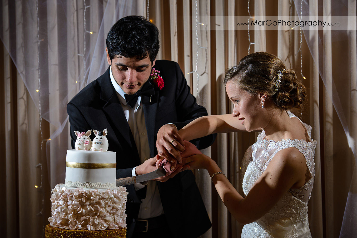bride and groom cutting wedding cake during reception at Fremont Century House & Gardens
