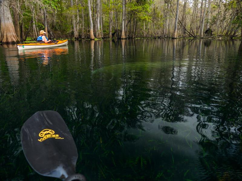 02-23-2019 Ichetucknee River kayak (7 of 78).jpg