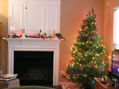 Tree and Decorating 2010