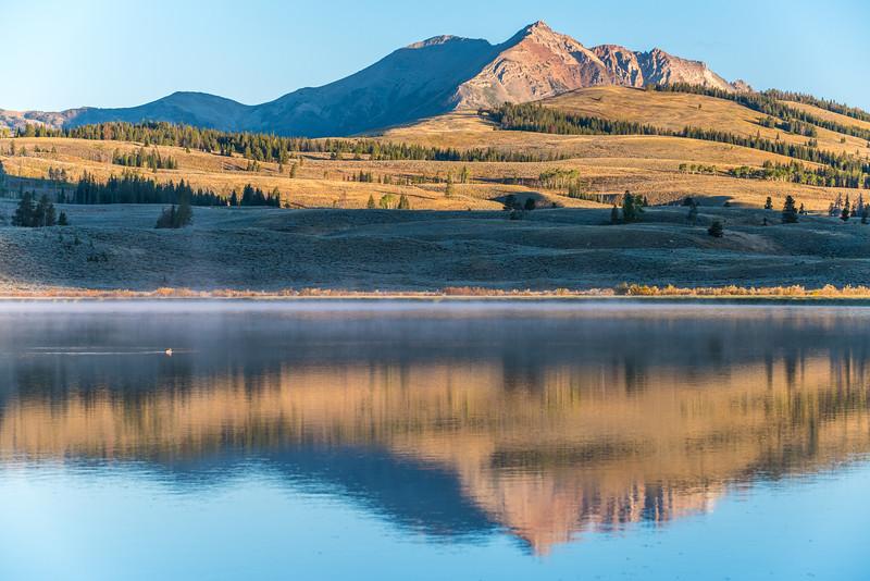 Swan-Lake-7.jpg