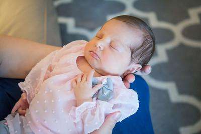 Amelia, 17 days old
