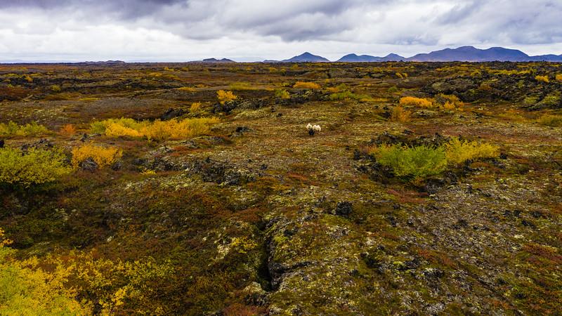 Iceland_M2P_Stills-1179.jpg