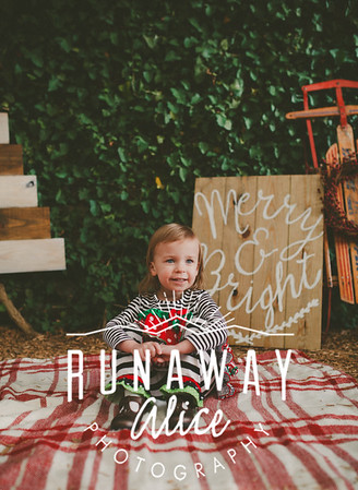 Cox Family Minis 2015 (Digital Downloads)