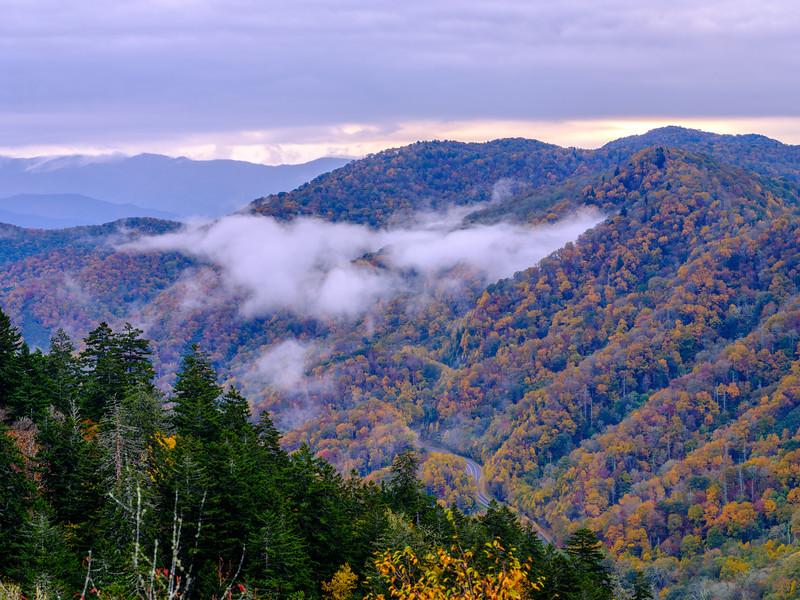 20201011_smoky_mountains-2645.jpg