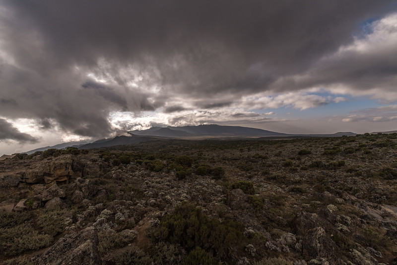 Kilimanjaro_Feb_2018-39.jpg
