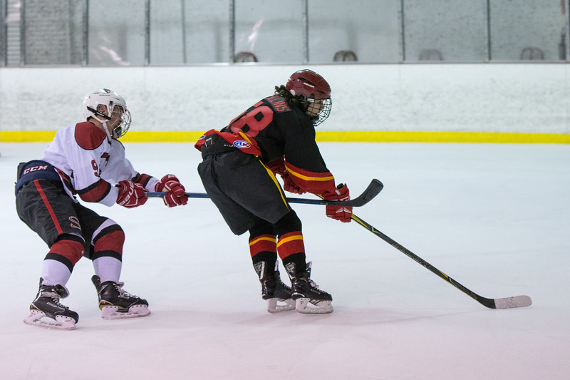 20180202 BI Hockey 361.jpg