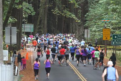 Humboldt Redwoods Marathon