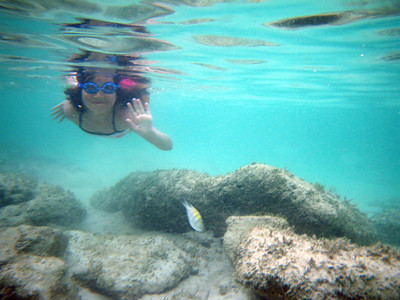 Snorkeling Pictures