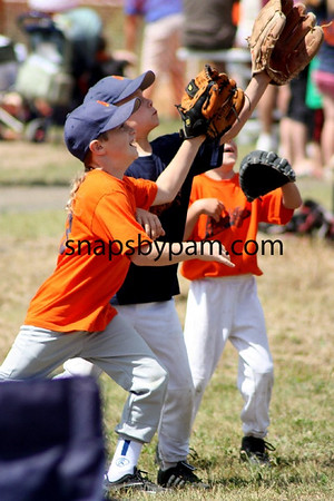 T Ball Cherry vs Brookston Blue