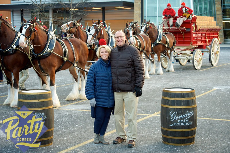 Clydesdale Portraits 227.jpg