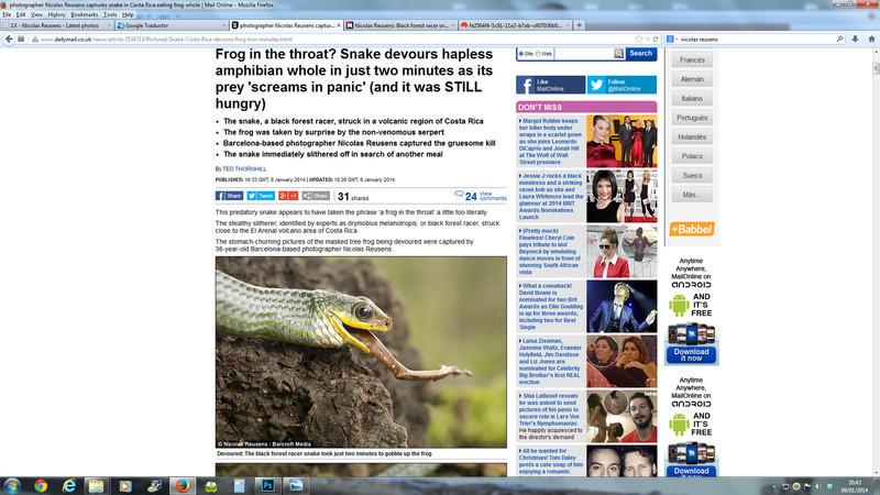 MAil-Online-2014-serpiente.jpg