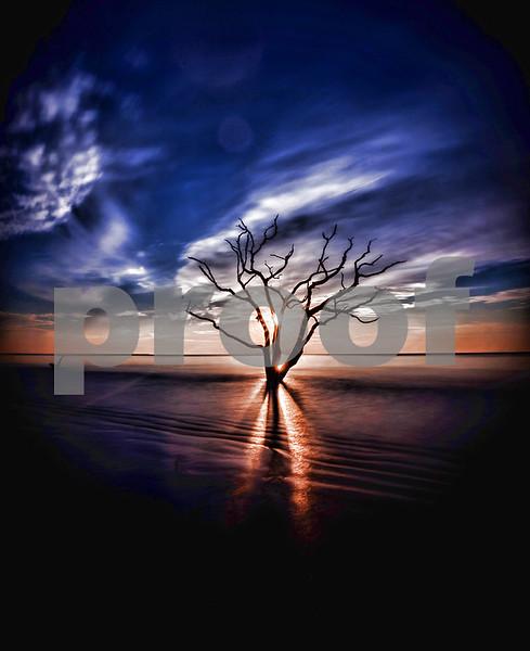 Sunrise lone tree in ocean-X2.jpg
