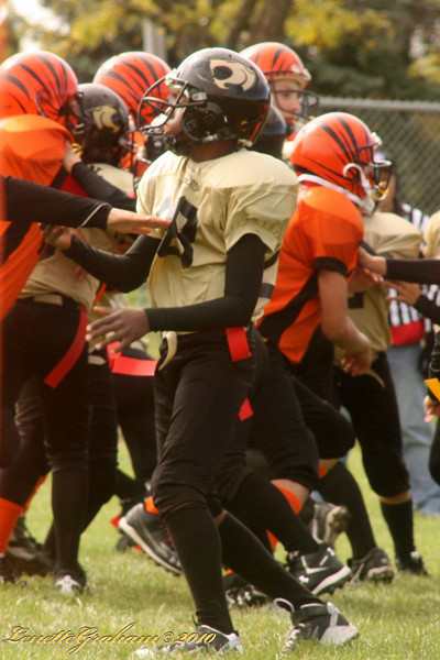 Thundercats Vs. Bengals 2010