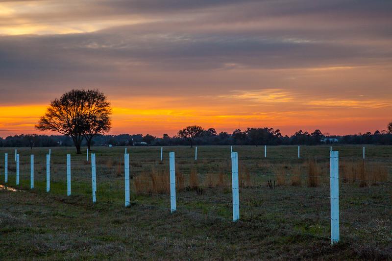 2015_3_13 Sunset on Telge-6577.jpg