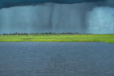 Chobe River_3593-Edit