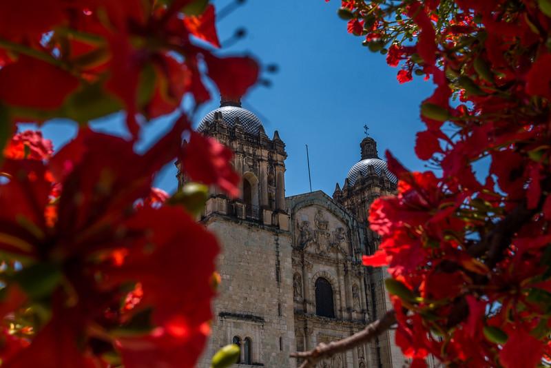 Oaxaca-Centro-6.jpg