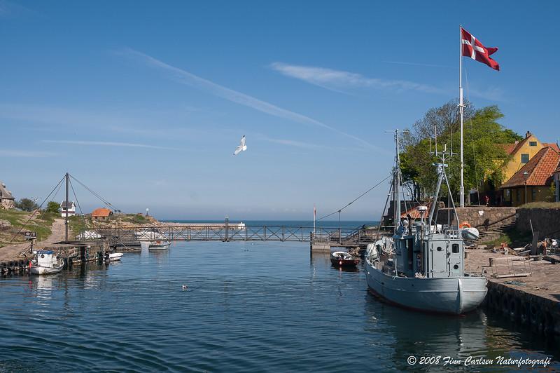 Havnen - The harbour