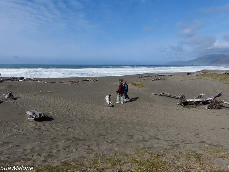 02-16-2021 Exploring the Lost Coast-28.jpg