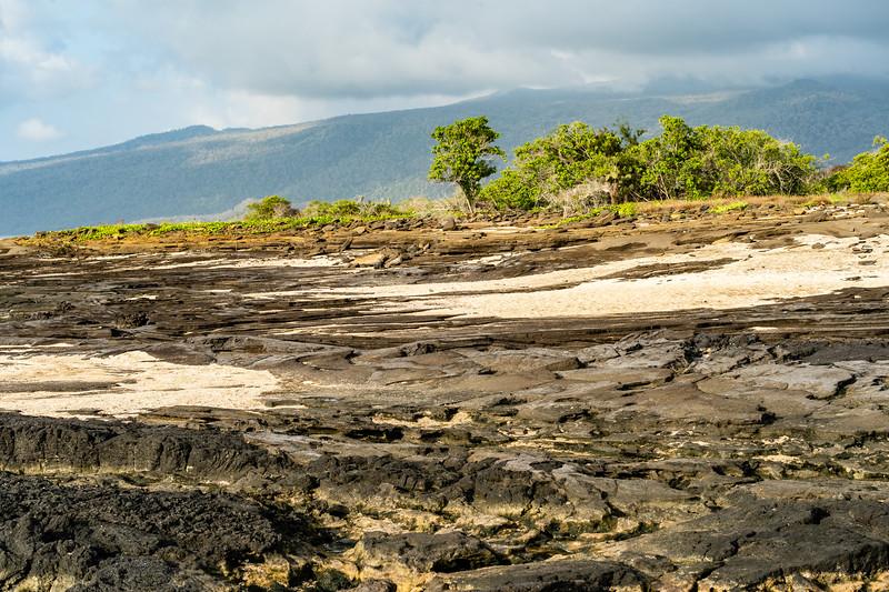 Galapagos-3391.jpg