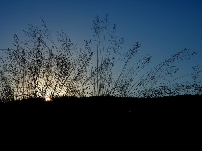 Canaan Valley sunset.JPG