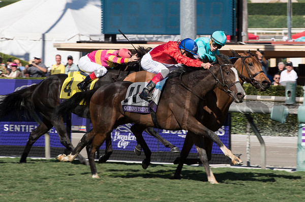 Breeders' Cup Filly and Mare Turf
