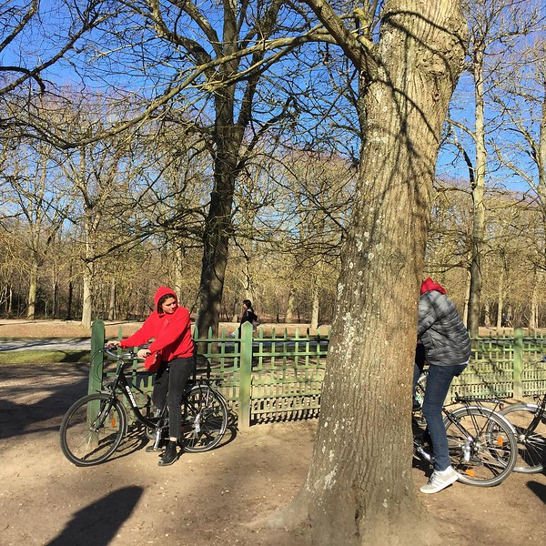 Bike riding in the forêt de Versailles. Super 🙌�
