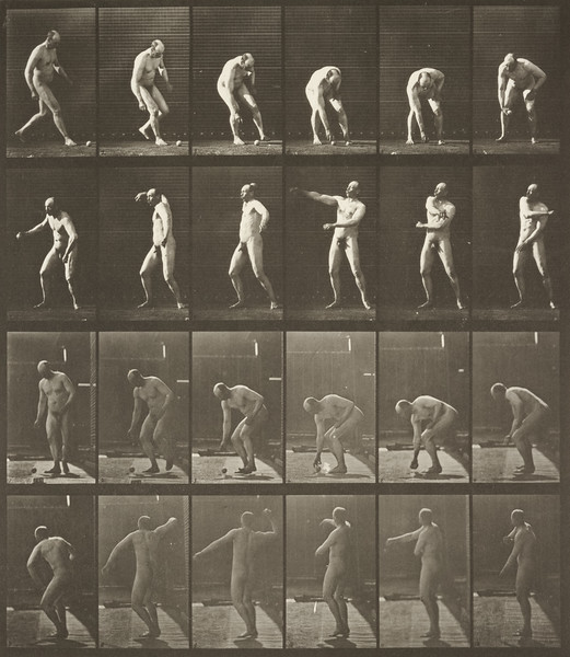 Nude man picking up a ball and throwing it (Animal Locomotion, 1887, plate 302)