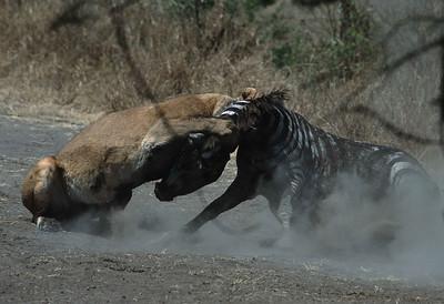 Tanzania attack