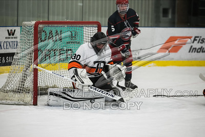 Dickinson Hockey 2017-2018