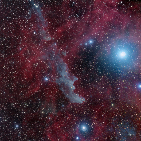 The Witch Head Nebula (IC2118)