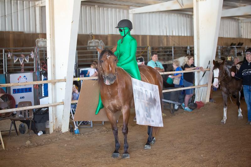 HorseCostume-11.jpg