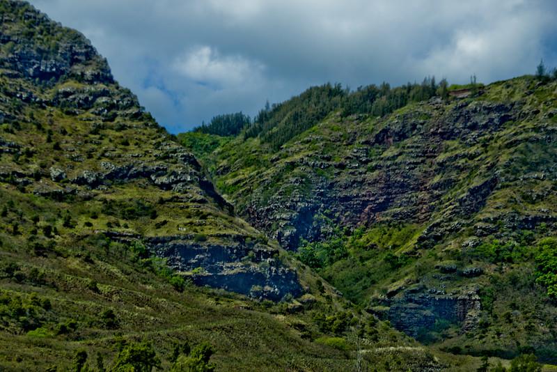 Journey into Oahu Photograph 111