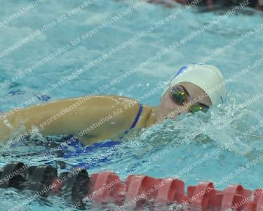 Swimming 2017