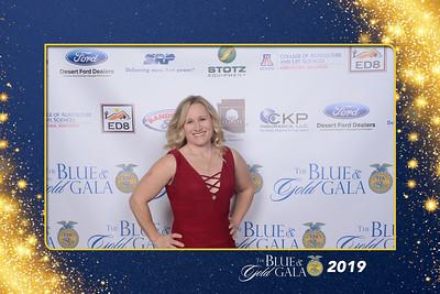 2019 Blue & Gold Gala Red Carpet Photos
