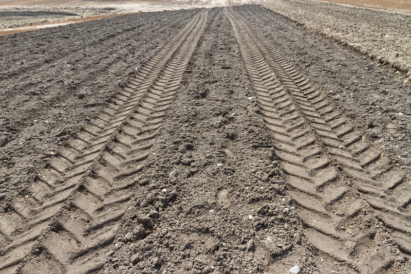 Traktorspor