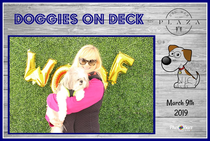 Doggys on Deck31.jpg