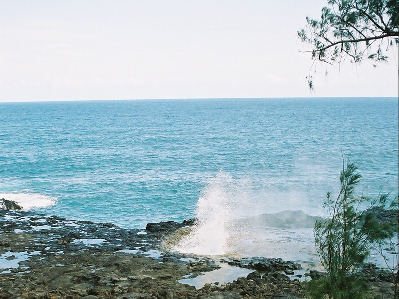 Hawaii-551.jpg